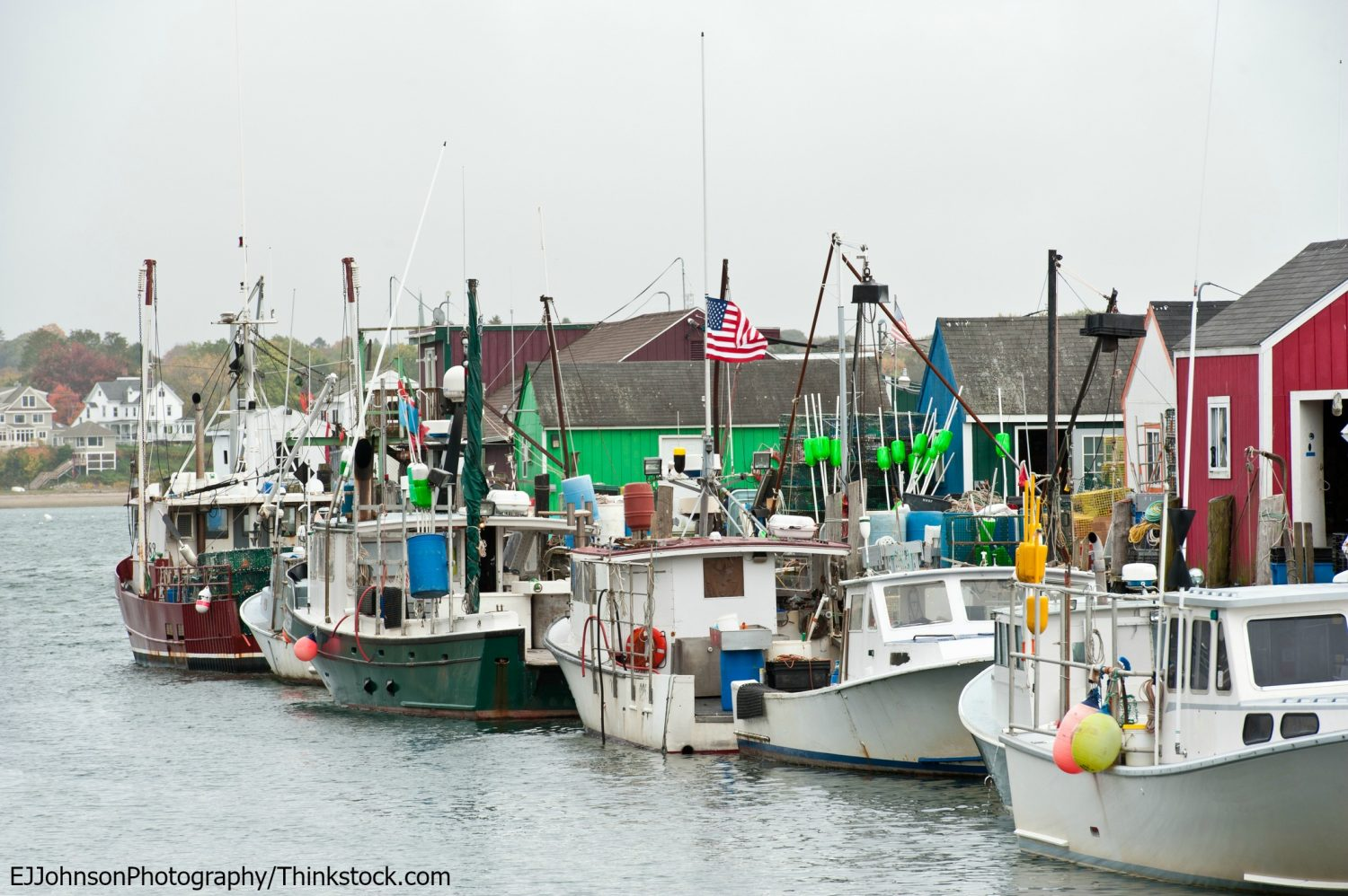 What you need to know when you plan a trip to maine for Portland maine fishing