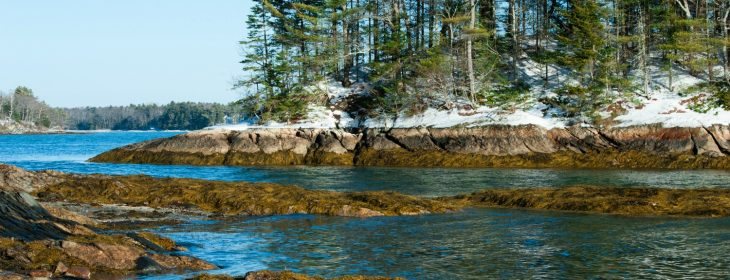 Wolfe's Neck State Park in Freeport, ME